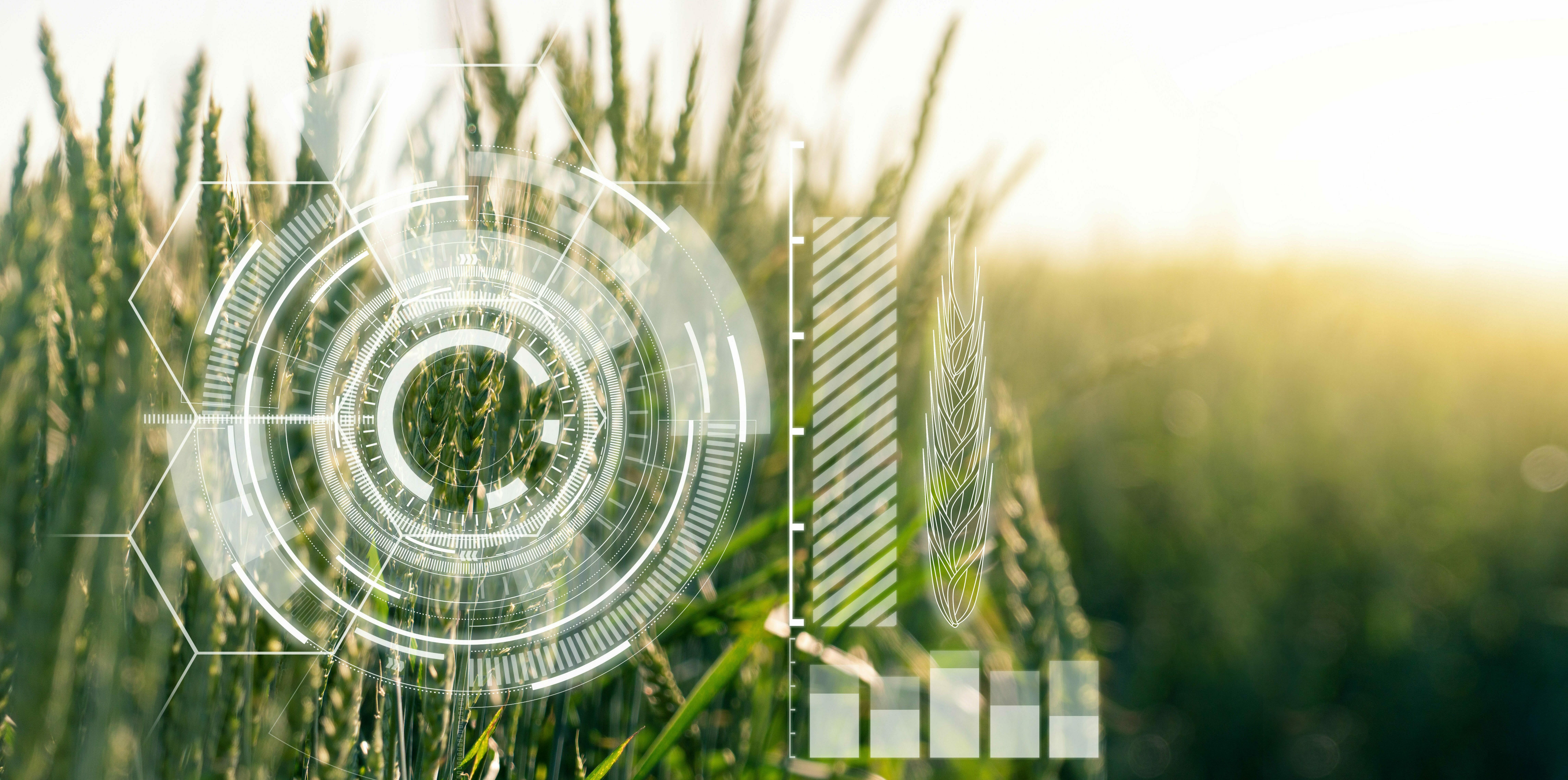Actuaciones de eficiencia energética en Agropecuarios
